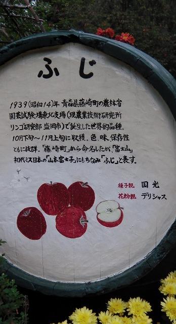 IMGA0175