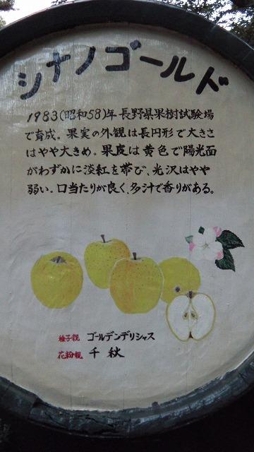 IMGA0176