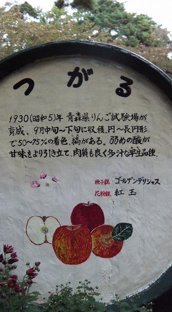 IMGA0179